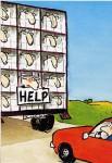 mouton-help
