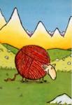 mouton-pelotte