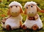 2 petits agneaux ingénus